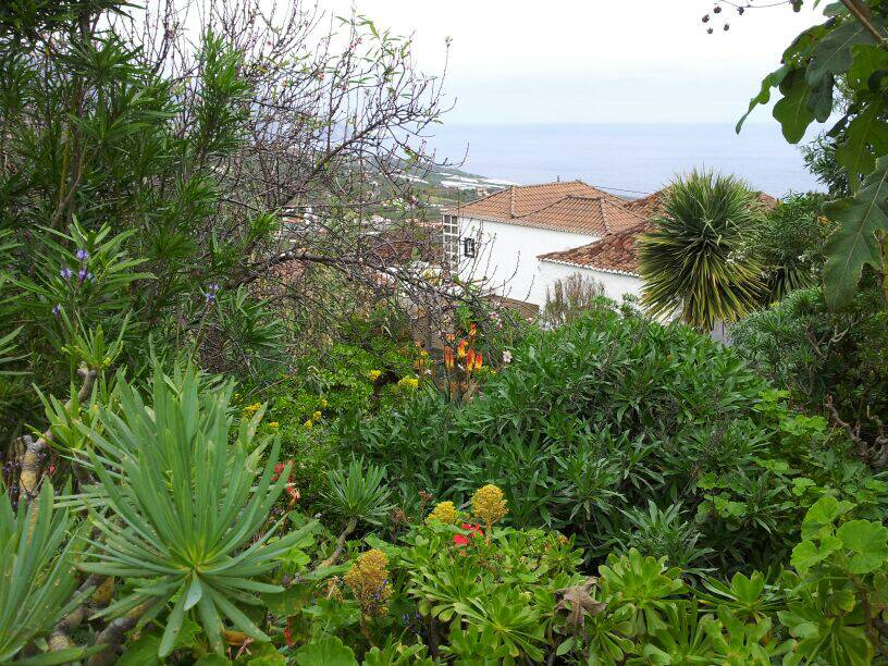 2014/01/14 - St. Cruz de La Palma - Costa Classica-uploadfromtaptalk1389710751204-jpg