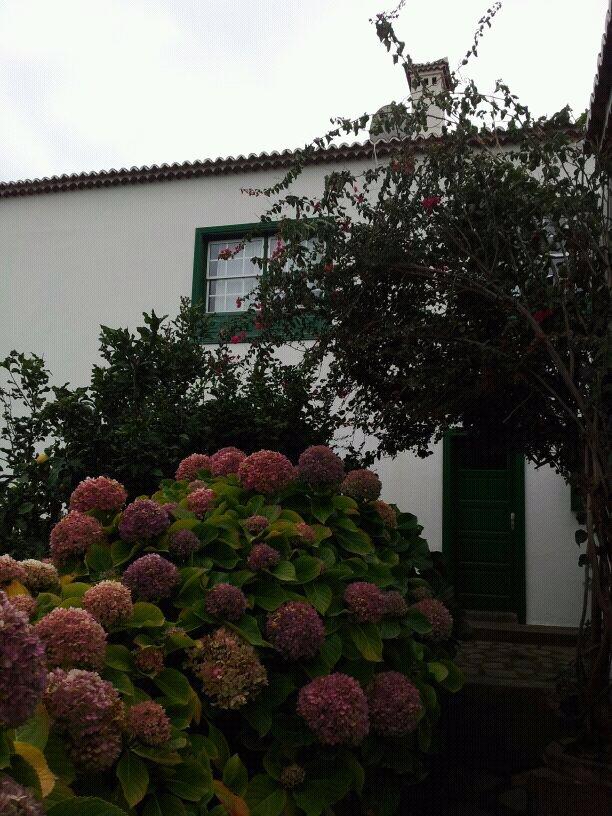 2014/01/14 - St. Cruz de La Palma - Costa Classica-uploadfromtaptalk1389710796807-jpg