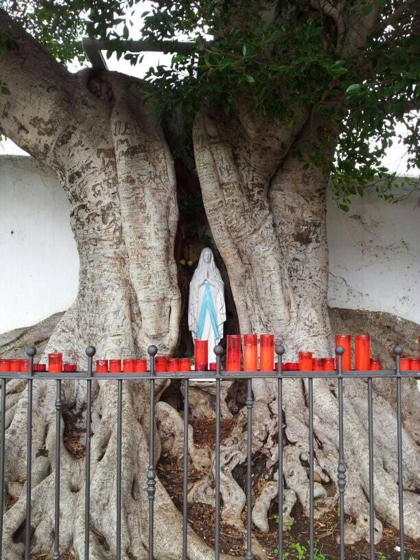 2014/01/14 - St. Cruz de La Palma - Costa Classica-uploadfromtaptalk1389711397973-jpg