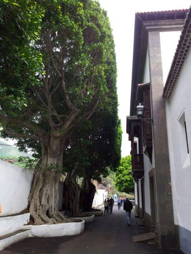 2014/01/14 - St. Cruz de La Palma - Costa Classica-uploadfromtaptalk1389711410967-jpg