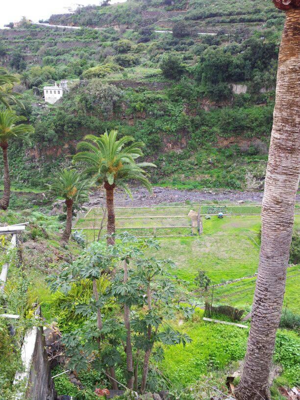 2014/01/14 - St. Cruz de La Palma - Costa Classica-uploadfromtaptalk1389711479062-jpg