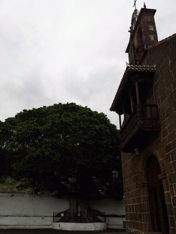 2014/01/14 - St. Cruz de La Palma - Costa Classica-uploadfromtaptalk1389711504571-jpg