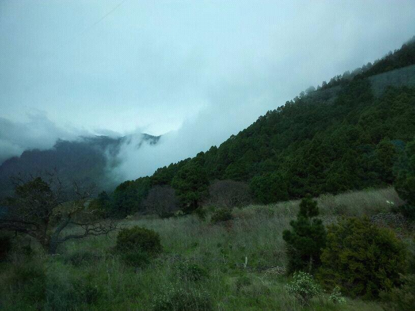 2014/01/14 - St. Cruz de La Palma - Costa Classica-uploadfromtaptalk1389715172280-jpg