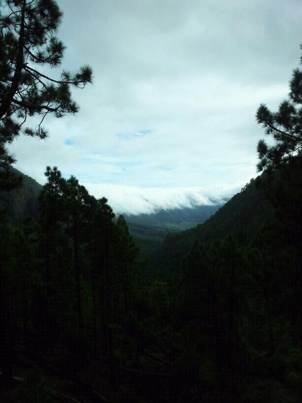 2014/01/14 - St. Cruz de La Palma - Costa Classica-uploadfromtaptalk1389715226786-jpg