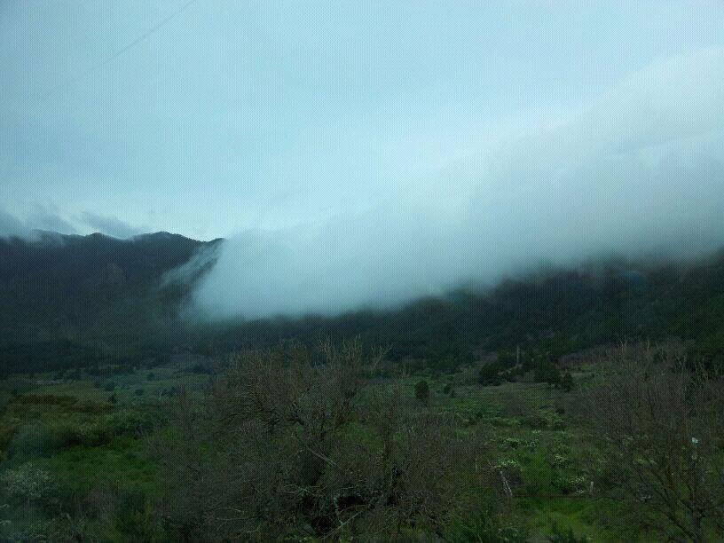 2014/01/14 - St. Cruz de La Palma - Costa Classica-uploadfromtaptalk1389715269026-jpg