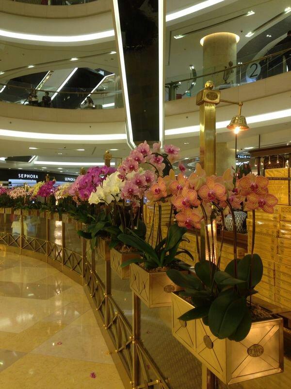 Soggiorno Pre crociera a Singapore dal 14 gennaio al 18-uploadfromtaptalk1389870836480-jpg
