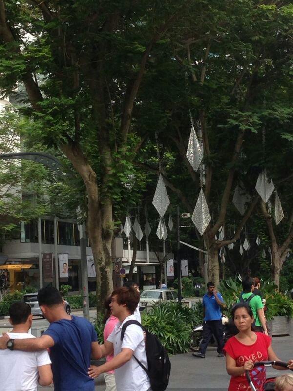 Soggiorno Pre crociera a Singapore dal 14 gennaio al 18-uploadfromtaptalk1389870917126-jpg