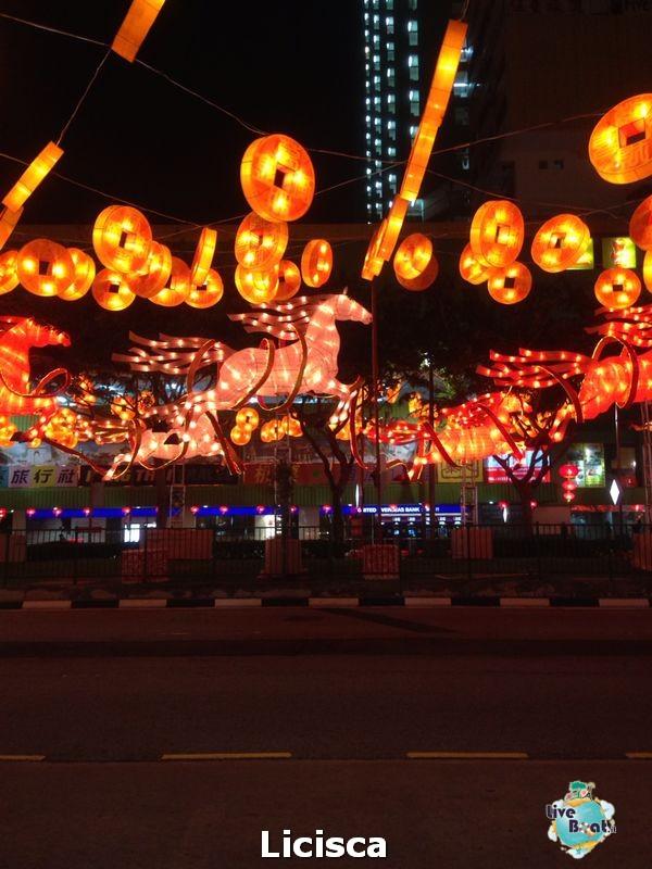 Soggiorno Pre crociera a Singapore dal 14 gennaio al 18-18-celebrity-millennium-soggiorno-singapore-diretta-liveboat-crociere-jpg