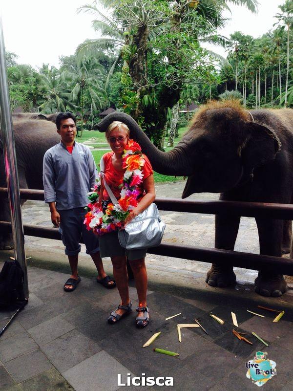 2014/01/25 Benoa, Bali, Indonesia overnight-5-celebrity-millennium-isola-bali-diretta-liveboat-crociere-jpg
