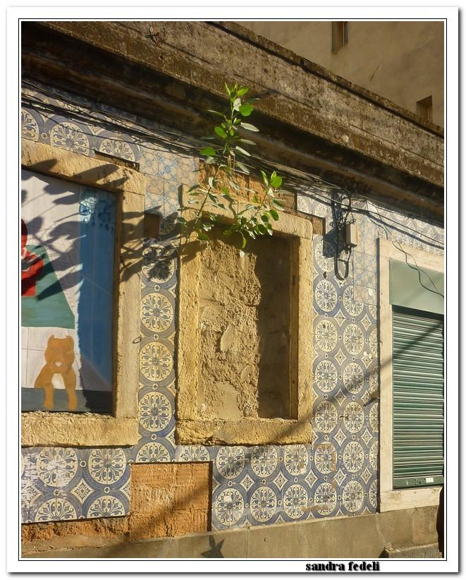 Costa Serena- Oltre le colonne d'Ercole 24/11 04/12 2013-image00557-jpg