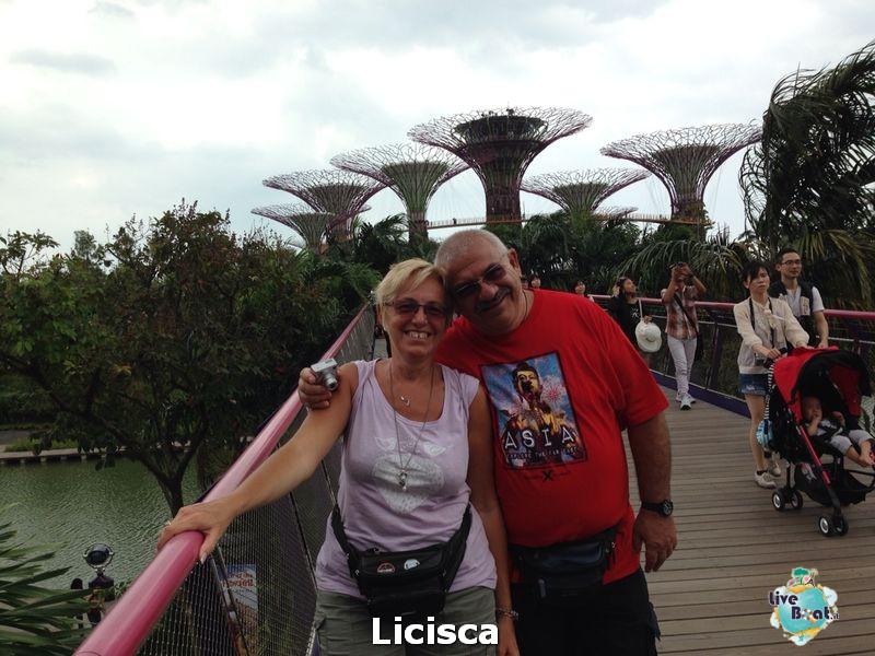 2014/02/02 Sbarco a Singapore Millennium-3-celebrity-millennium-sbarco-singapore-diretta-liveboat-crociere-jpg