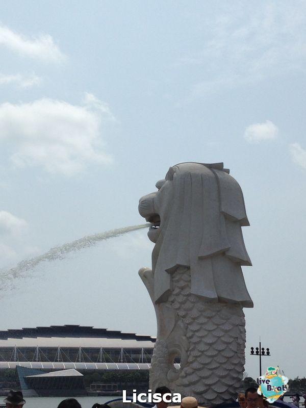 2014/02/02 Sbarco a Singapore Millennium-7-celebrity-millennium-sbarco-singapore-diretta-liveboat-crociere-jpg