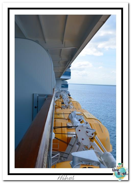"Costa Luminosa ""Oceano - Caraibi"" 30/04 - 14/05/2012-islacatalina_liveboat_25-jpg"