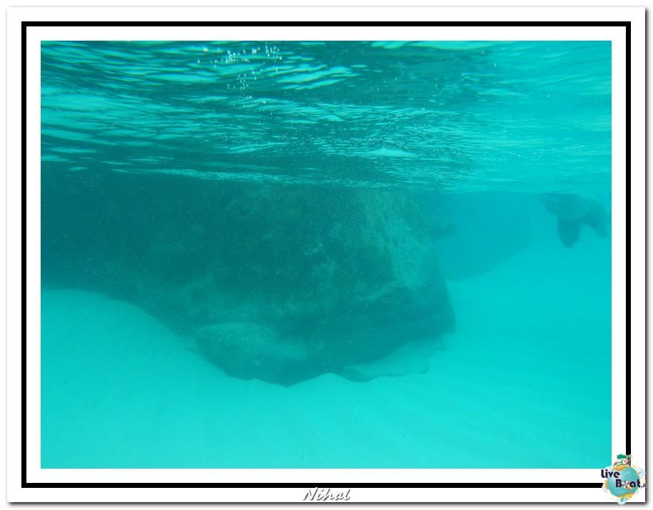 "Costa Luminosa ""Oceano - Caraibi"" 30/04 - 14/05/2012-tortola_liveboat_22-jpg"