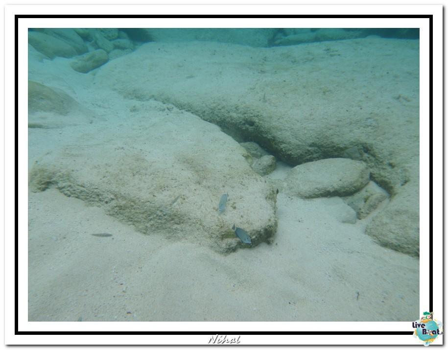 "Costa Luminosa ""Oceano - Caraibi"" 30/04 - 14/05/2012-tortola_liveboat_28-jpg"