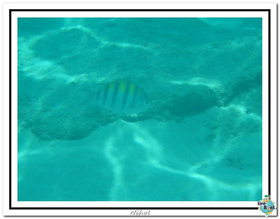"Costa Luminosa ""Oceano - Caraibi"" 30/04 - 14/05/2012-tortola_liveboat_30-jpg"