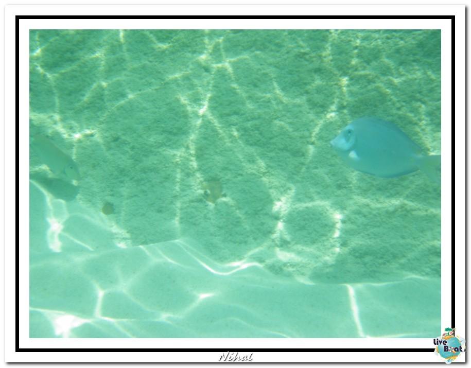 "Costa Luminosa ""Oceano - Caraibi"" 30/04 - 14/05/2012-tortola_liveboat_31-jpg"