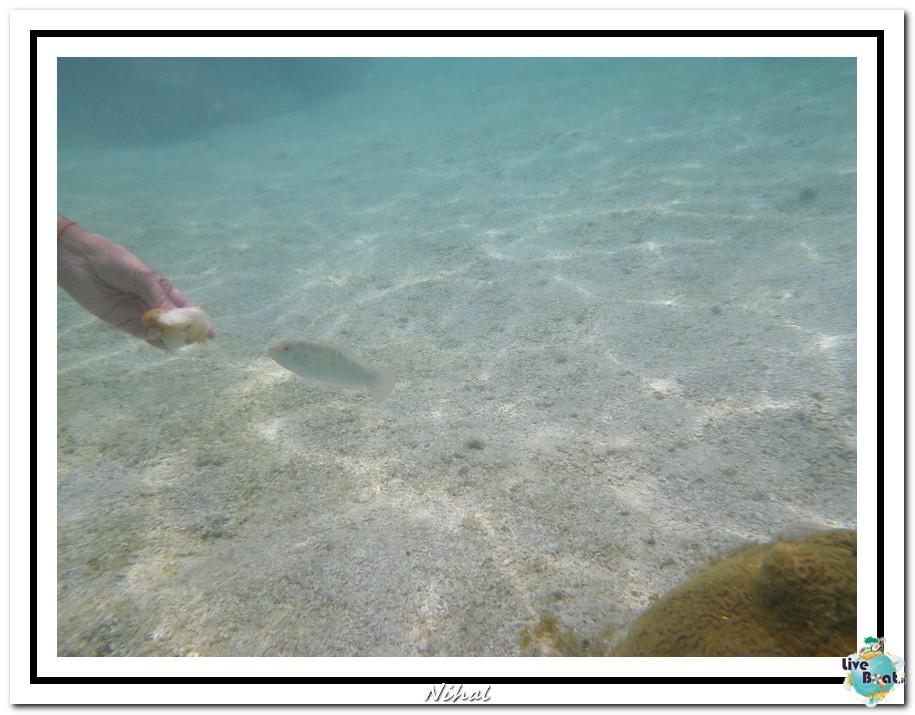 "Costa Luminosa ""Oceano - Caraibi"" 30/04 - 14/05/2012-antigua_liveboat_10-jpg"