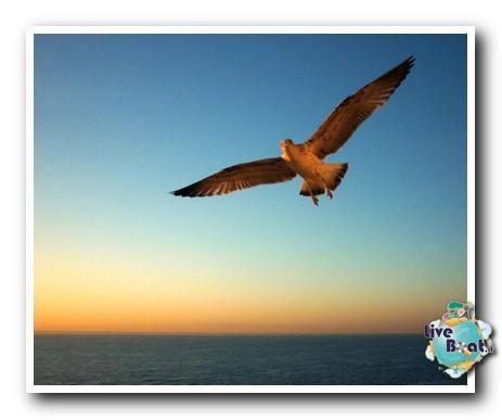 Costa Serena- Oltre le colonne d'Ercole 24/11 04/12 2013-image00331-jpg