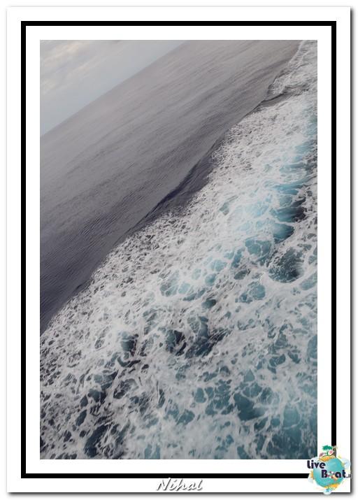 """Costa Luminosa """"Oceano - Caraibi"""" 30/04 - 14/05/2012-navigazione_liveboat_3-jpg"""