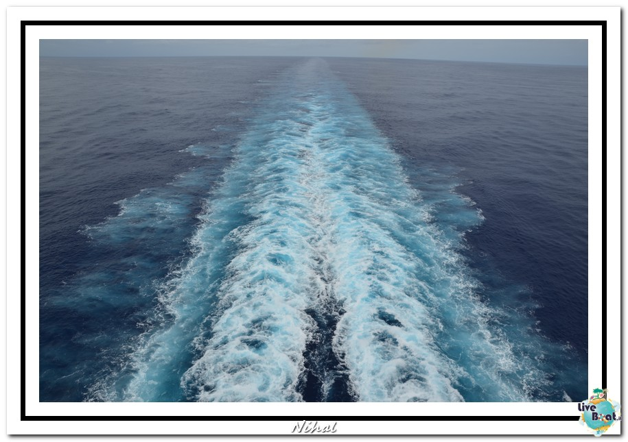 """Costa Luminosa """"Oceano - Caraibi"""" 30/04 - 14/05/2012-navigazione_liveboat_22-jpg"""