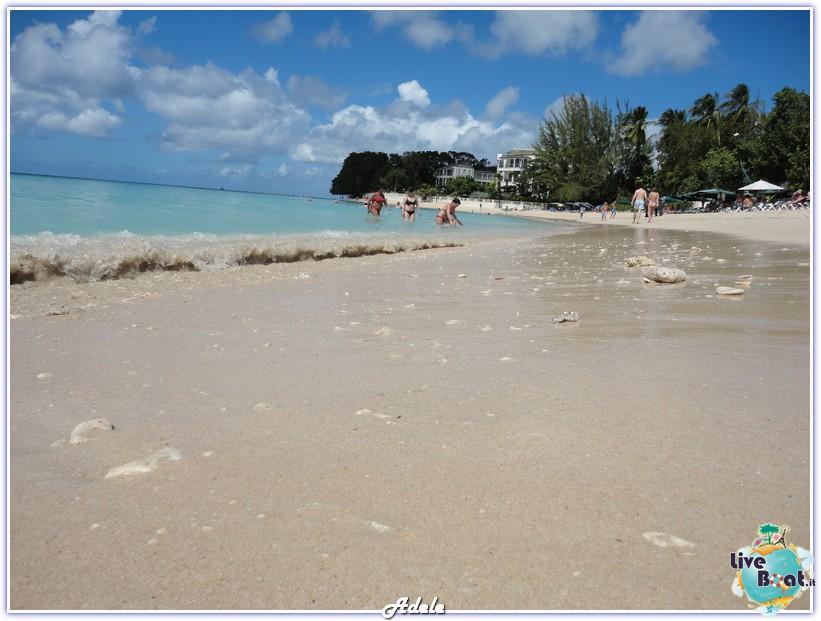 """""""Le Perle del caribe"""" Costa Mediterranea 30/01/11-06/02/11-foto-barbados-leperledelcaribe-forumcrociereliveboat-3-jpg"""