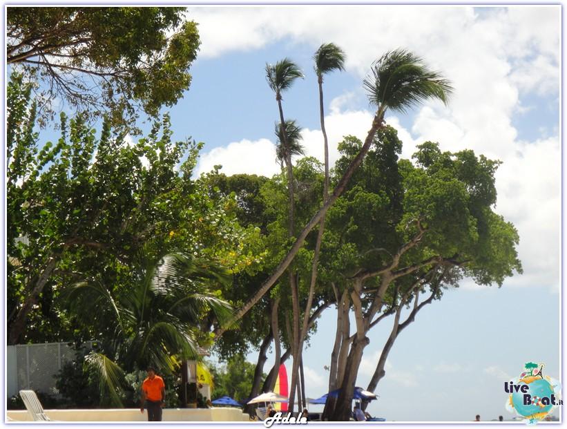 """""""Le Perle del caribe"""" Costa Mediterranea 30/01/11-06/02/11-foto-barbados-leperledelcaribe-forumcrociereliveboat-5-jpg"""