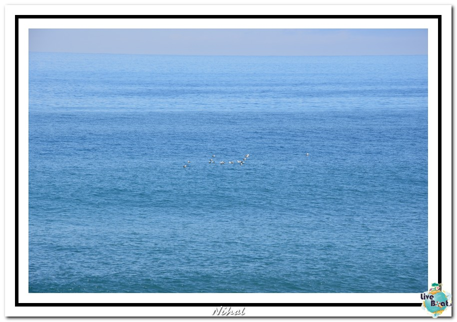 """Costa Luminosa """"Oceano - Caraibi"""" 30/04 - 14/05/2012-funchal_liveboat_22-jpg"""