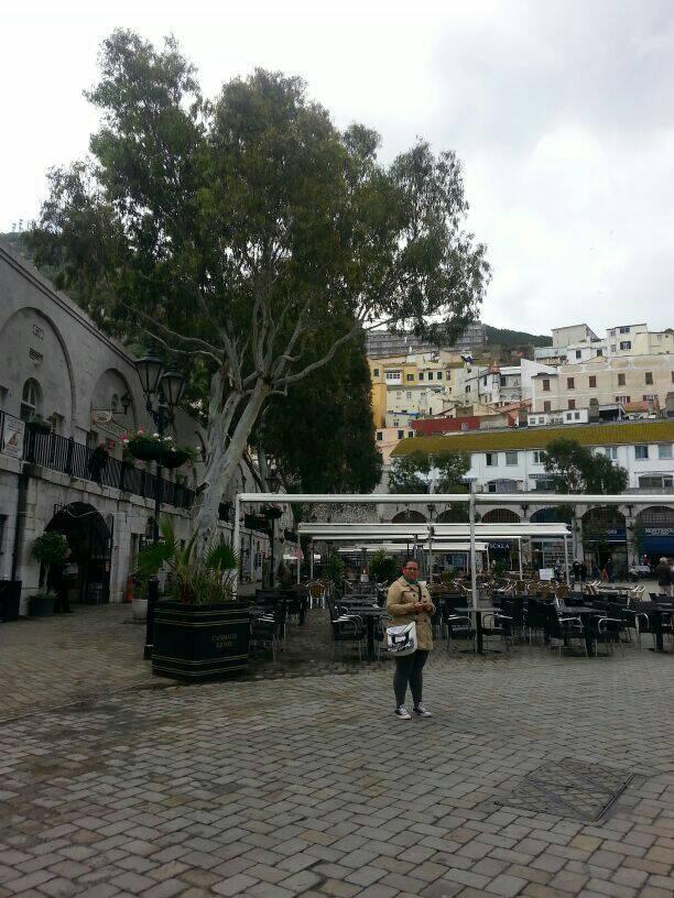 2014/04/03 - Gibilterra - Costa Mediterranea-uploadfromtaptalk1396604404087-jpg