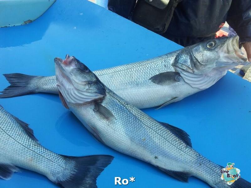 2014/04/13 - Marsiglia - Costa Favolosa-23-costa-favolosa-rosso-amaranto-marsiglia-diretta-liveboat-crociere-jpg