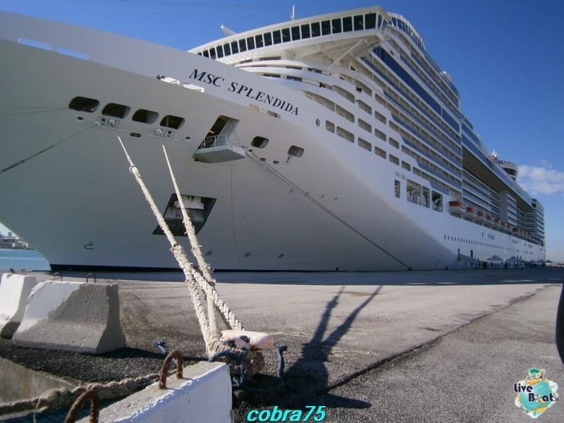 MSC Splendida-costa-magica-and-msc-splendida-liveboat-crocierep1230960-jpg