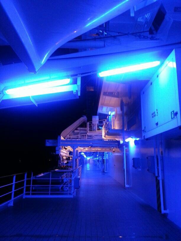 2014/04/18 Amburgo MSC Magnifica-uploadfromtaptalk1397901684765-jpg