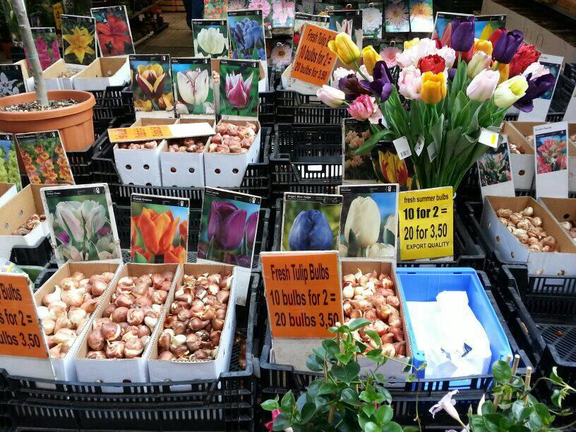 2014/04/20 Amsterdam MSC Magnifica-uploadfromtaptalk1397986253802-jpg