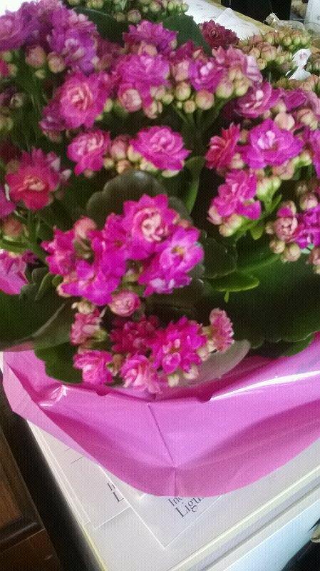 buona festa della mamma-uploadfromtaptalk1399788081999-jpg