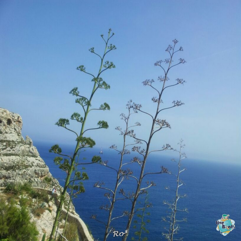 2014/05/20 - La Valletta - Costa neoRiviera-liveboat045-foto-costaneoriviera-costacrociere-malta-direttaliveboat-crociere-jpg