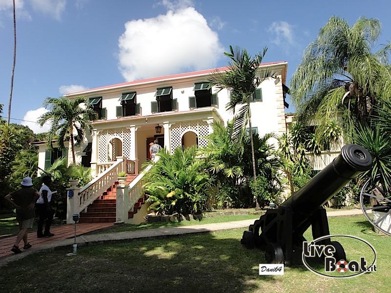 Barbados (Antille) 15/01/2011-dsc01846-jpg