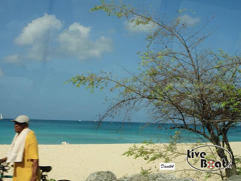 Barbados (Antille) 15/01/2011-dsc01786-jpg