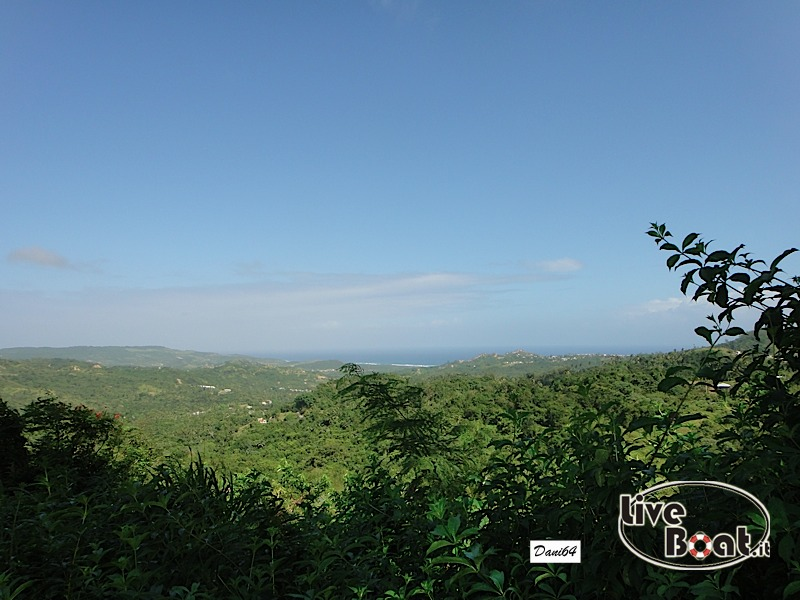 Barbados (Antille) 15/01/2011-dsc01809-jpg