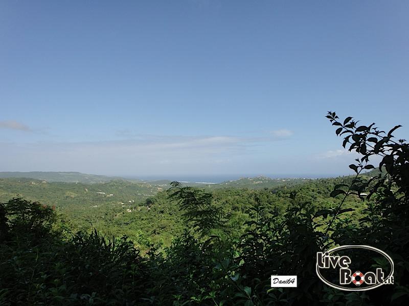 Barbados (Antille) 15/01/2011-dsc01810-jpg