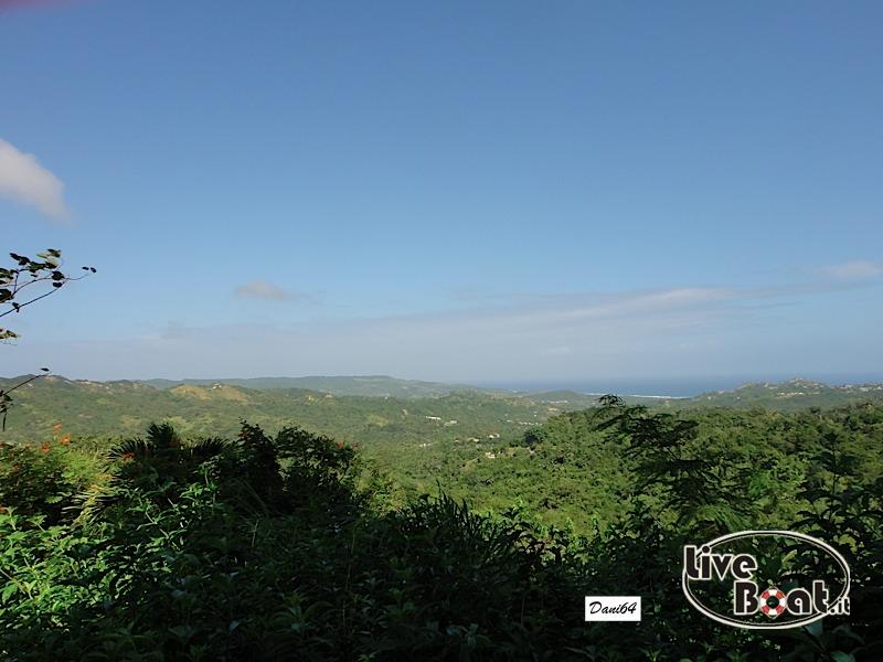 Barbados (Antille) 15/01/2011-dsc01811-jpg