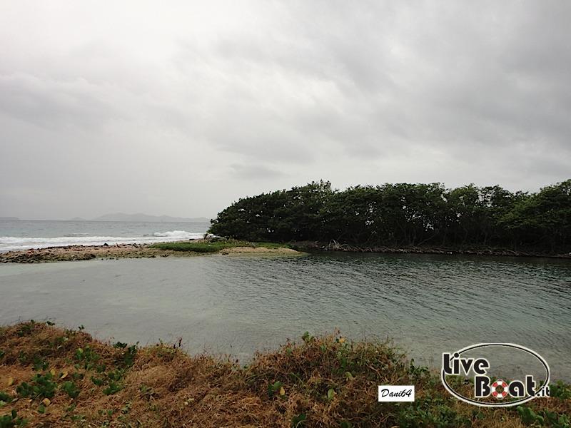 Tortola (isole Vergini) 13/01/2011-dsc01713-jpg