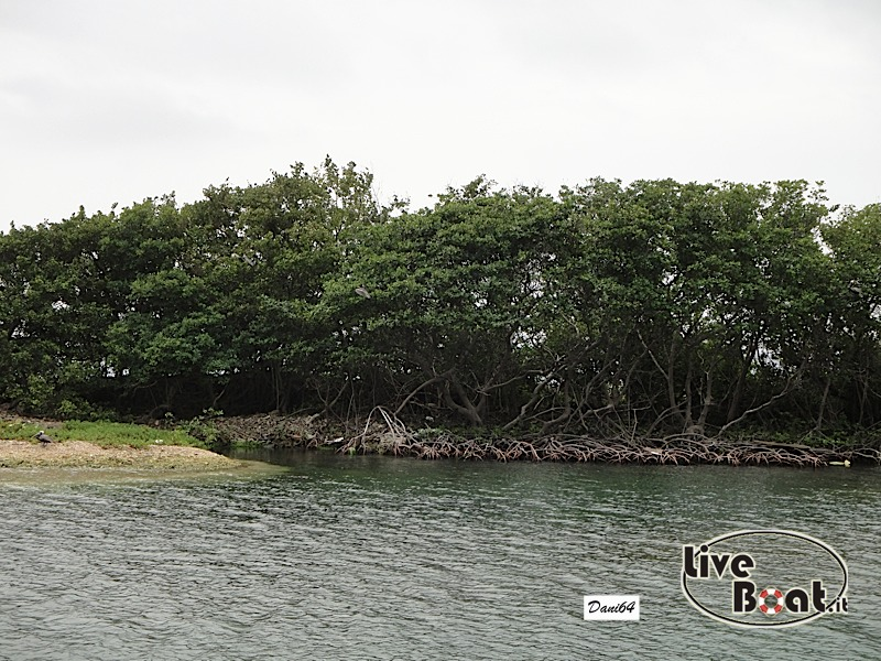 Tortola (isole Vergini) 13/01/2011-dsc01715-jpg