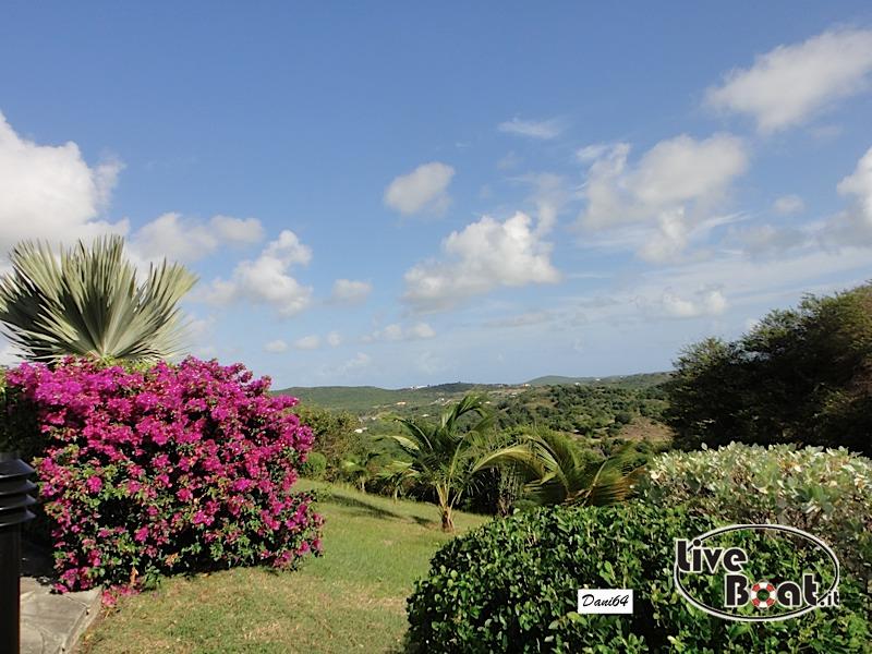 Antigua (Antille) 14/01/2011-dsc01747-jpg
