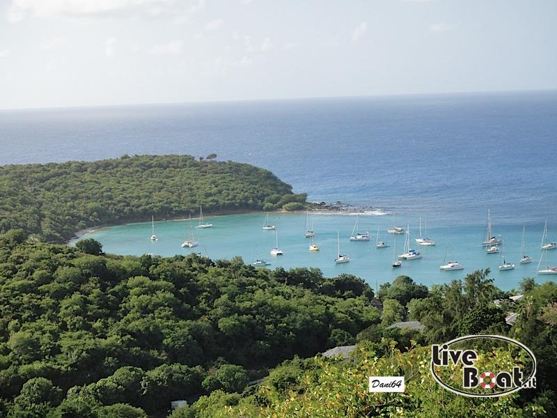 Antigua (Antille) 14/01/2011-dsc01750-jpg