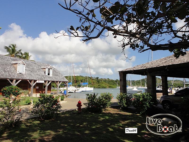 Antigua (Antille) 14/01/2011-dsc01760-jpg