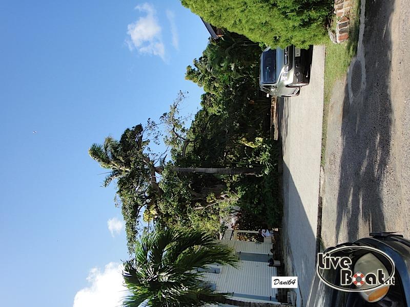 Antigua (Antille) 14/01/2011-dsc01761-jpg