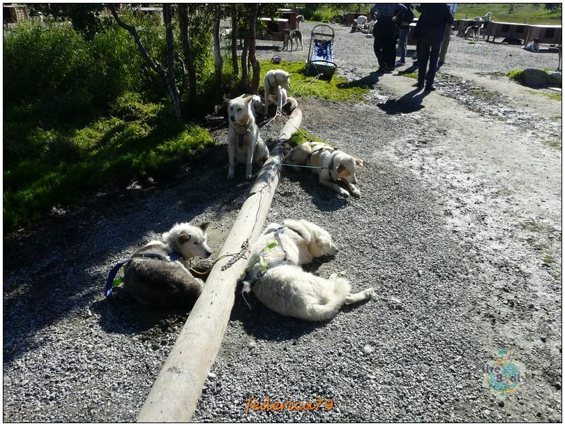Tromso-tromso00008-jpg