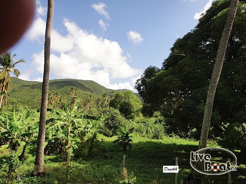 Antigua (Antille) 14/01/2011-dsc01775-jpg