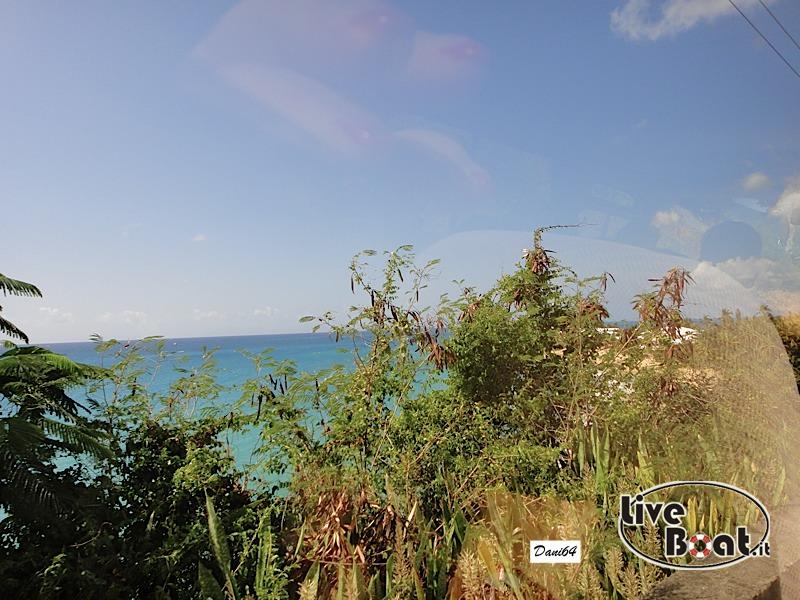 Antigua (Antille) 14/01/2011-dsc01776-jpg
