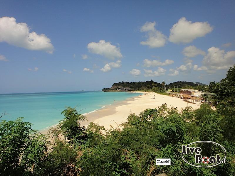 Antigua (Antille) 14/01/2011-dsc01780-jpg